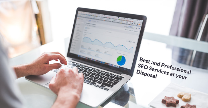 Best-and-Professional-SEO-Services-at-your-Disposal