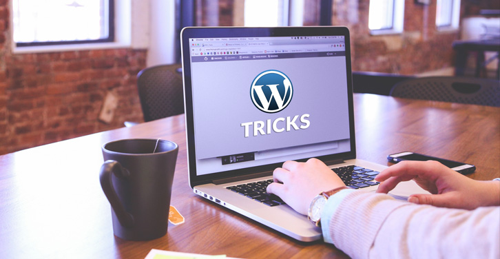 10-useful-tricks-to-keep-in-mind-before-launching-a-WordPress-Website