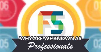 Professional Web Development Services Infographics