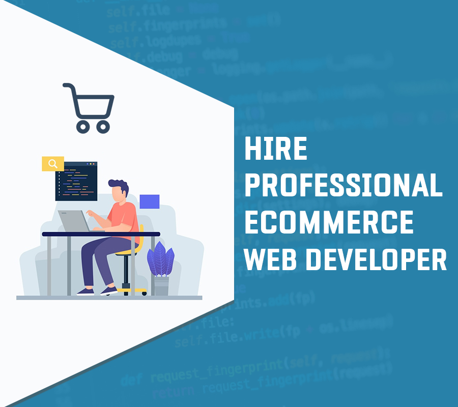 Professional eCommerce Web Developer