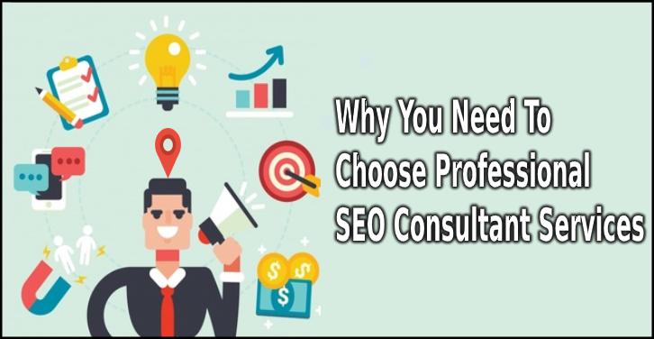 Professional SEO Consultant Services
